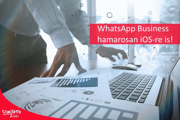 WhatsApp Business hírek